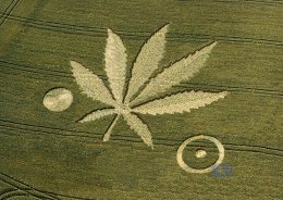 crop circles 2019 - Page 3 What-are-crop-circles-evidence-of:i.2.3